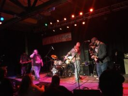 Danny Pease and the Regulators at Gateway City Arts - photo by Caity Simpson