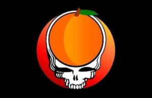 Steal Your Peach band logo